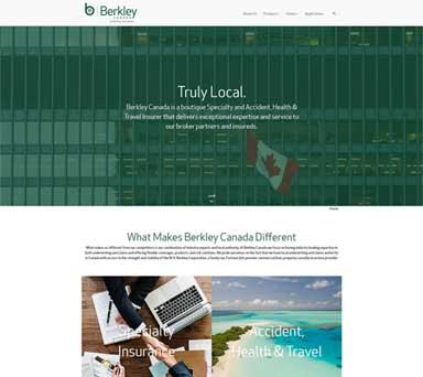 Web Design Project for Berkley Canada